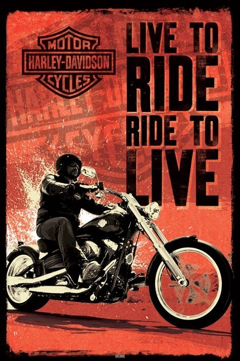 Ultimate Harley Davidson 2 (1)-min